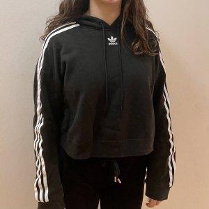Adidas Original - cropped hoodie