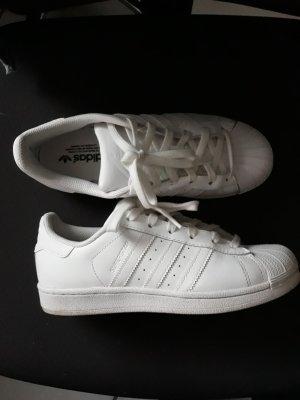 Adidas originals Superstar W Gr. 38 - sehr guter Zustand