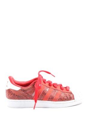 Adidas Basket à lacet rouge-blanc imprimé allover style décontracté