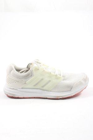 Adidas Schnürsneaker wollweiß-weiß Motivdruck Casual-Look