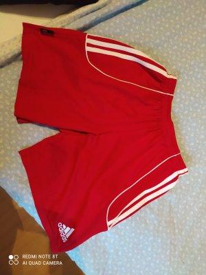 Adidas Short wit-rood