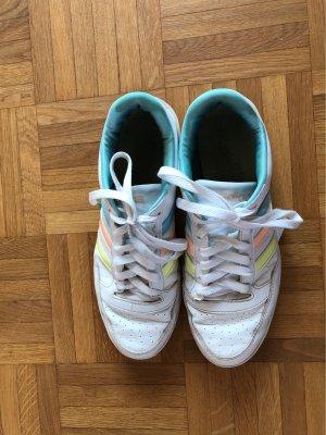 Adidas Basket à lacet multicolore