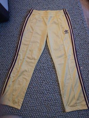 Adidas Spodnie sportowe żółty neonowy-fiolet