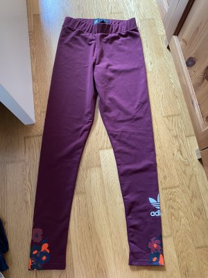 Adidas pantalonera púrpura