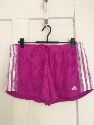 Adidas Sportshort veelkleurig
