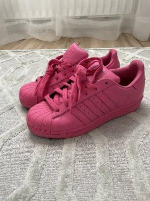 Adidas superstar Basket à lacet rose-rose fluo