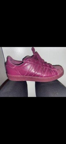 Adidas Chaussure skate violet foncé-violet