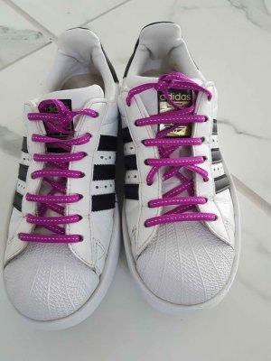 Adidas Superstar + 3 Schnürsenkel