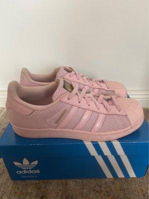 Adidas superstar Basket à lacet or rose