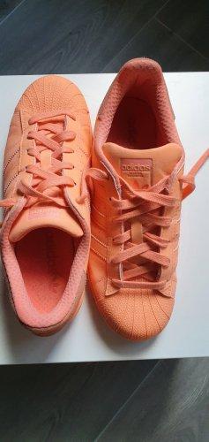 Adidas superstar Sneakers met veters abrikoos