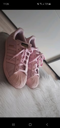 Adidas Superstar in Rosa.