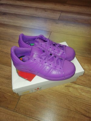Adidas Superstar Pharrell Williams Supercolor Pack Sneaker in Lila Gr. 36 2/3