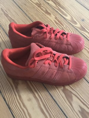 Adidas Superstar rot 37 1/3