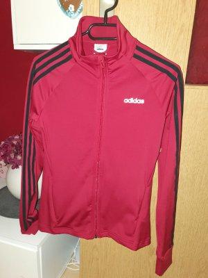 Adidas Sweatjacke  / Sportswear