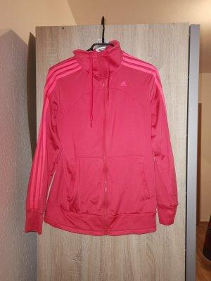 Adidas Sweatshirt rouge framboise-rose
