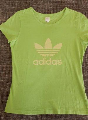 Adidas T-shirt Wielokolorowy
