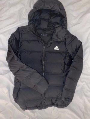 Adidas Winterjack zwart
