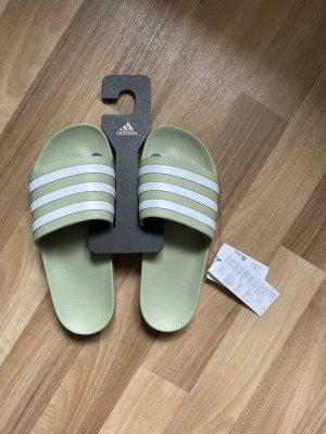 Adidas Chancla de baño verde grisáceo