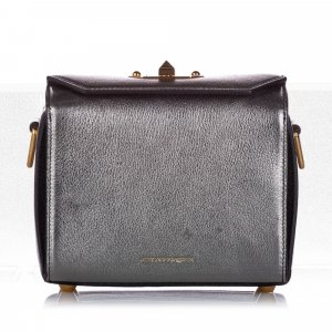 Alexander McQueen Crossbody bag silver-colored leather