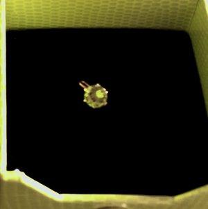 Anhänger 585 Gold und Halbedelstein Peridot