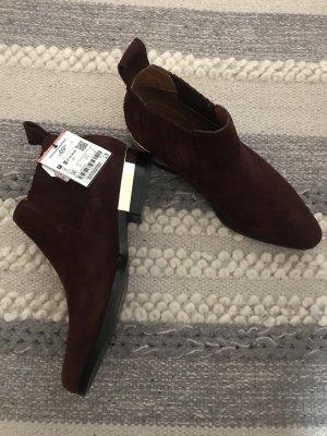 Zara Ankle Boots bordeaux