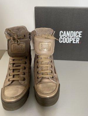 Candice Cooper Sneaker stringata marrone-grigio