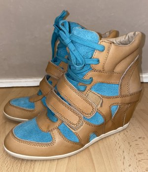 ASH High Top Sneaker cognac-coloured-turquoise