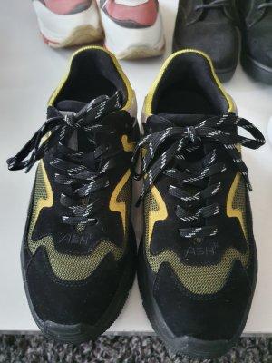 ASH Italia Sneakers Gr. 37