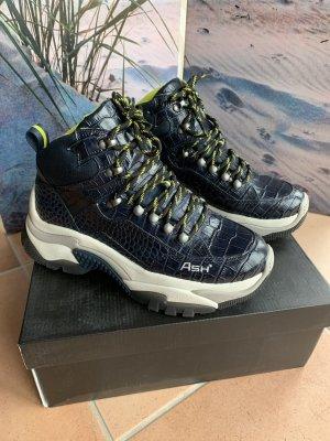 ASH Sneaker Größe 39, NP 265€