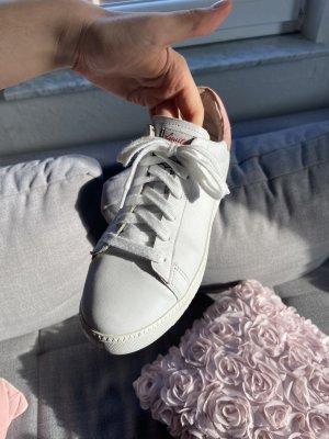 Ash Sneaker weiß / rosa