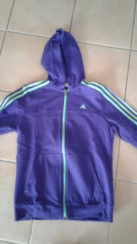 Adidas Originals Hoody lilac-green cotton