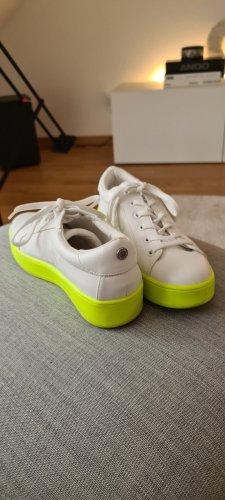 Ausgefallene Sneaker Neon Steve Madden Gr. 38