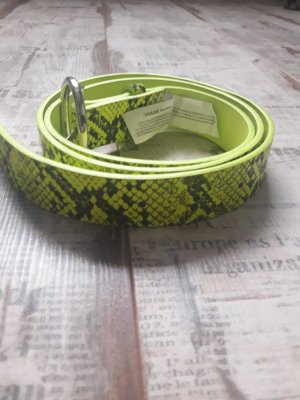 Primark Cinturón de cadera verde oscuro-verde pradera