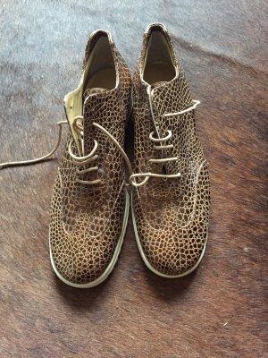 Baldinini Sznurowane buty brąz-brązowy