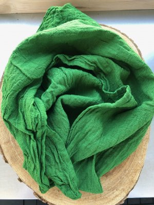 Ohne Neckerchief forest green cotton