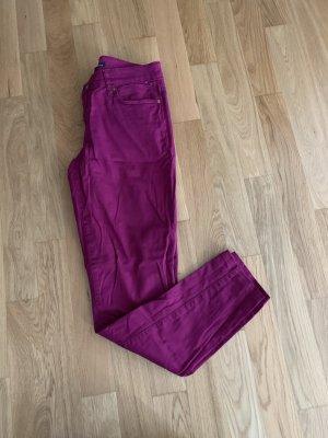 beerenfarbene Jeans von Tommy Hilfiger