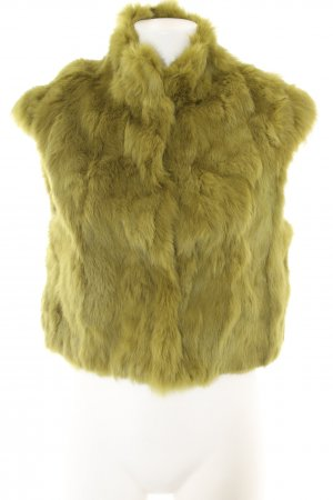 Betta Corradi Fur vest green casual look