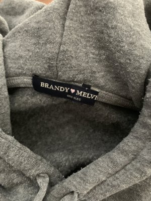 Brandy & Melville Hooded Sweatshirt silver-colored-grey cotton