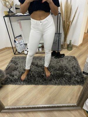 Calzedonia Pantalon cigarette blanc