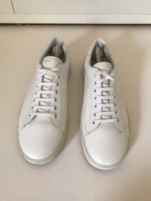 Celine Lace-Up Sneaker white-gold-colored