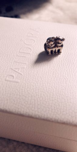 Pandora Dije color plata