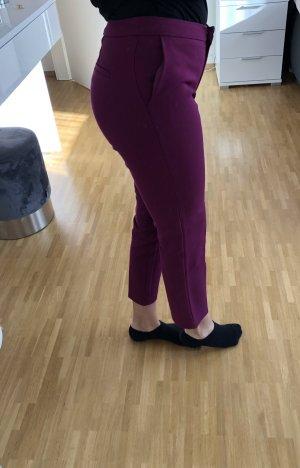 Koton Pantalone chino viola