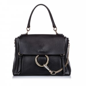 Chloe Faye Day Satchel
