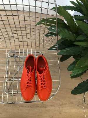Common projects sneaker original
