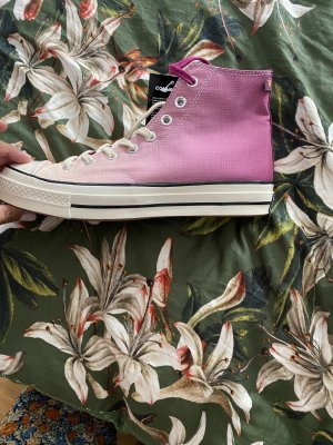 Converse Skater Shoes multicolored