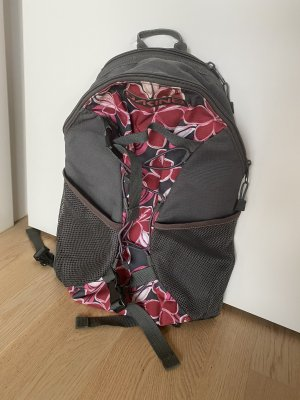 Dakine Trekking Backpack grey-raspberry-red