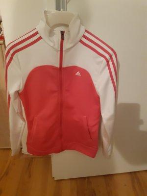 Damen Adidas weste neuewertig 38
