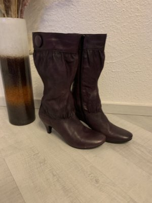 Tango Bottes stretch brun pourpre