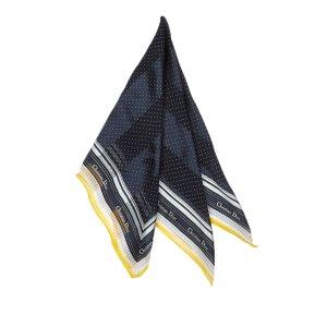 Dior Sjaal blauw Zijde