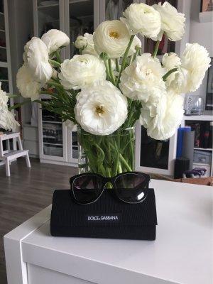 Dolce & Gabbana Retrobril zwart kunststof
